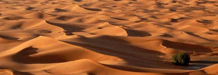 Desert-Dunes18-720x606